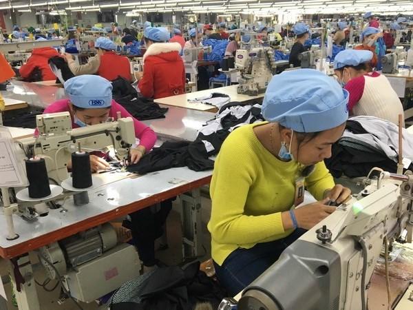 Ofrece Vietnam asistencia a exportadores en medio de COVID-19 hinh anh 1