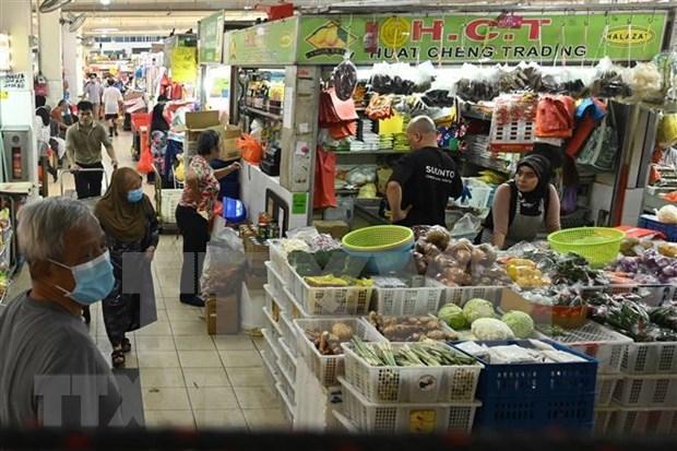 Recibiran singapurenses asistencia financiera del gobierno hinh anh 1