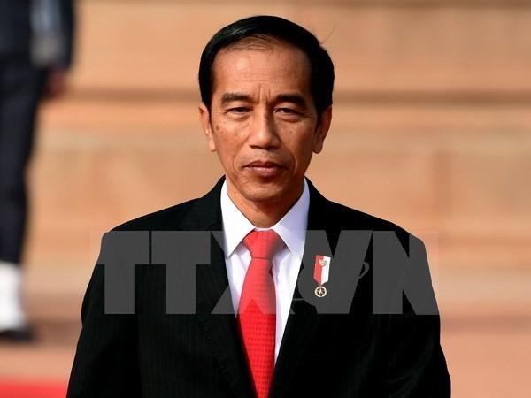 Presidente indonesio asistira a dos teleconferencias regionales sobre el COVID-19 hinh anh 1