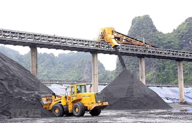 Grupo Industria de Carbon y Mineria de Vietnam establece meta para el segundo trimestre hinh anh 1