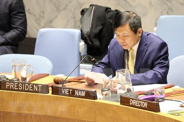Vietnam reitera apoyo a Mision de Verificacion de ONU en Colombia hinh anh 1