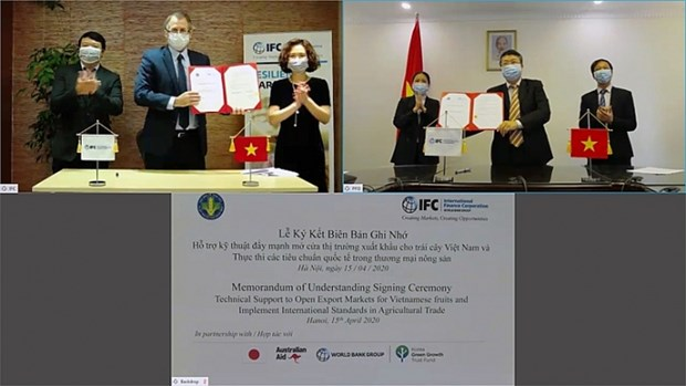 IFC apoya a Vietnam a expandir su mercado para la exportacion de frutas hinh anh 1