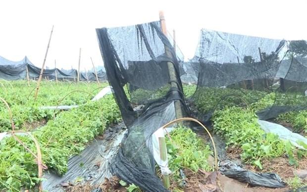 Ministro vietnamita llama a fortalecer respuesta a desastres hinh anh 1