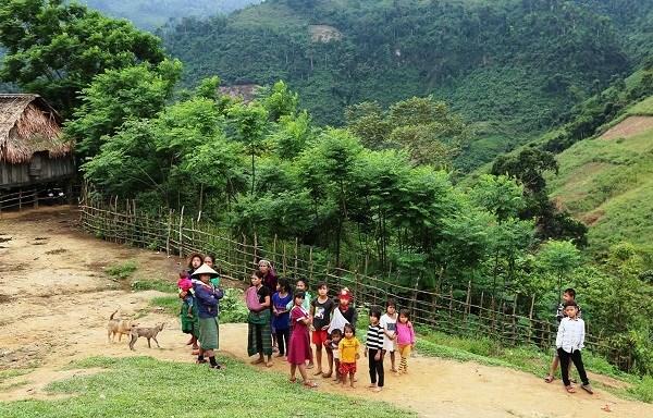 Vietnam apunta a reducir la desnutricion entre ninos de minorias etnicas hinh anh 1