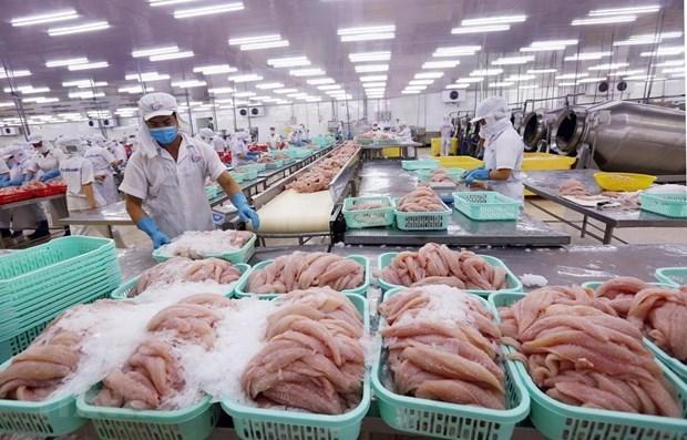 Ventas de productos acuaticos de Vietnam a China muestran signos de repunte hinh anh 1