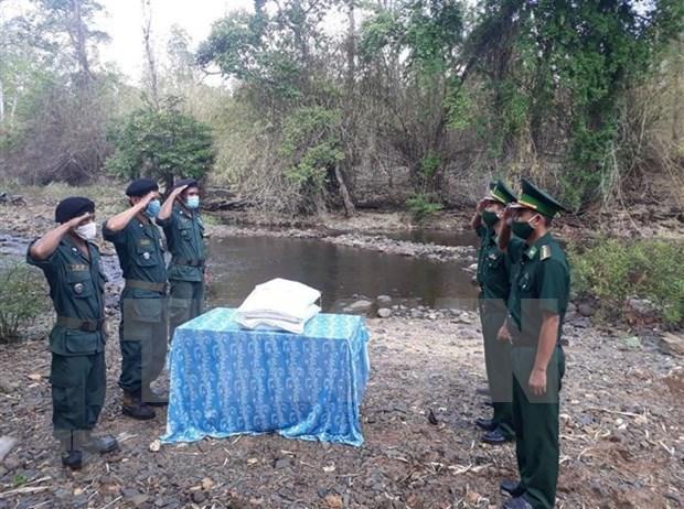 Asistencia arrocera en zonas limitrofes estrecha relaciones Vietnam-Camboya hinh anh 1