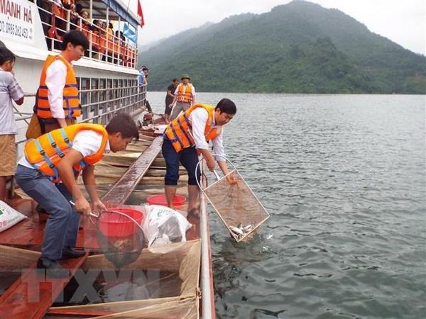 Vietnam proyecta plan para proteccion y explotacion de recursos acuaticos hinh anh 1