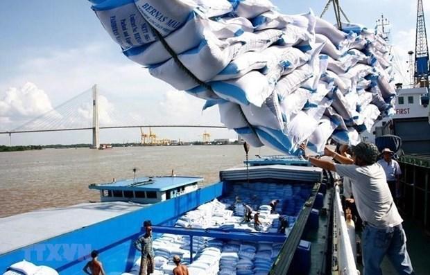 Exigen pesquisar observancia de leyes en la gestion de exportacion de arroz vietnamita hinh anh 1