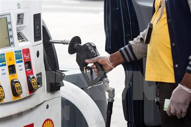 Indonesia: caida de precios del petroleo ejerce presion sobre presupuesto estatal hinh anh 1