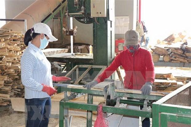 Encabeza Vietnam encuesta de optimismo de ciudadania sobre recuperacion economica tras COVID-19 hinh anh 1