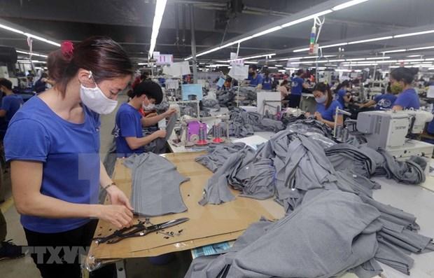 OIT publica informe sobre efectos de COVID-19 en mercado laboral de Vietnam hinh anh 1