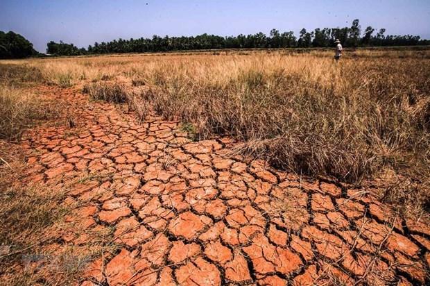 PNUD y Suecia apoyan a Camboya en respuesta al cambio climatico hinh anh 1