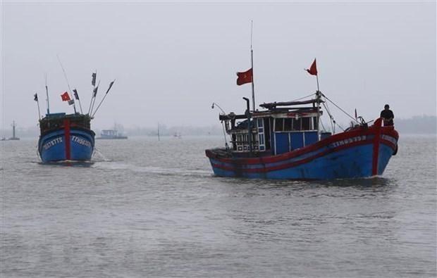 Expertos critican actos de China en el Mar del Este hinh anh 1