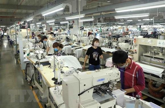 Crean oportunidades de empleo para apoyar a trabajadores y empresas a hacer frente al COVID-19 hinh anh 1