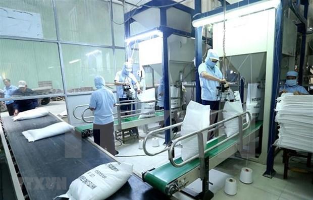 Facilita Vietnam tramitacion aduanera para el arroz exportable hinh anh 1