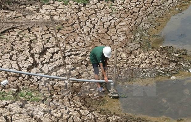 Banco vietnamita respalda a personas afectadas por sequia y salinizacion hinh anh 1