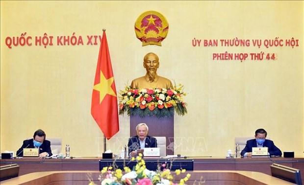 Asamblea Nacional analiza politica especifica de Hanoi hinh anh 1