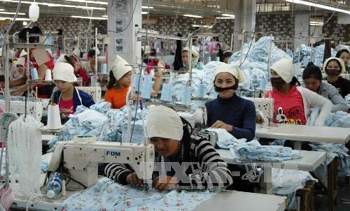 Exportaciones de textiles de Camboya sufriran caida en segundo trimestre de 2020 hinh anh 1