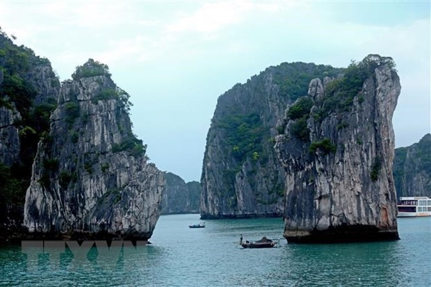 Reanudan servicios turisticos en la Bahia de Halong hinh anh 1