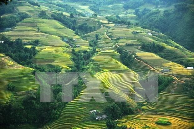 Sapa ofrece multiples descuentos para impulsar el turismo local hinh anh 1