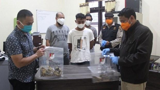 Frustra Indonesia complot para atentado con bomba en mezquita hinh anh 1