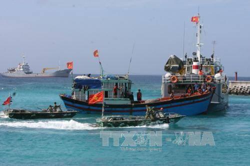 Sociedad vietnamita de Pesca se opone a reglamentacion china sobre veda en Mar del Este hinh anh 1