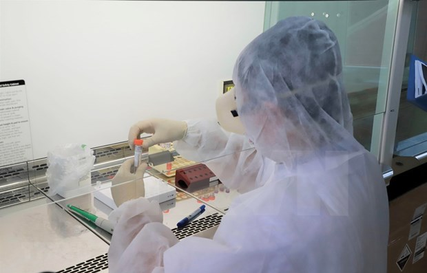 Empresa vietnamita alcanza exitos iniciales en prueba de vacuna antiCovid-19 en ratones hinh anh 1