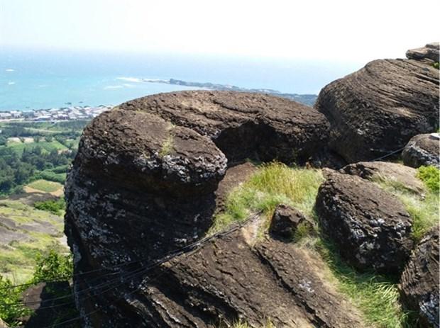 Rocas volcanicas halladas en la isla vietnamita de Phu Quy hinh anh 1