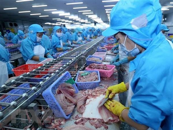 Disminuyen exportaciones pesqueras de Vietnam en primer tercio del ano hinh anh 1