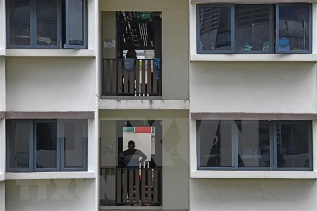 Ministro de Salud de Singapur reitera factores para reabrir la economia hinh anh 1