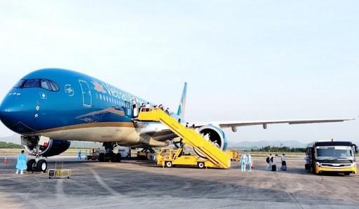 Organizan vuelos para repatriar a vietnamitas varados en Estados Unidos y Francia hinh anh 1