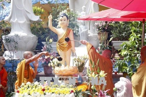 Celebran el Vesak 2564 en temporada pandemica en Laos hinh anh 1