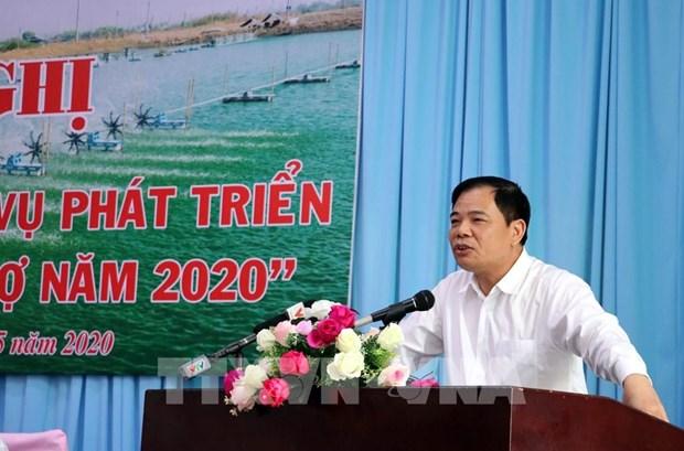 Exportadores de camaron de Vietnam aspiran superar los tres mil millones de dolares hinh anh 1