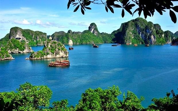 Vietnam celebrara la Semana de Turismo de Ha Long - Quang Ninh hinh anh 1