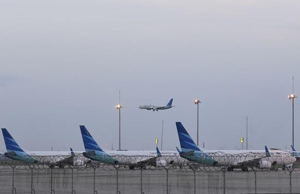 Reanudan Indonesia servicios de transporte aereo hinh anh 1