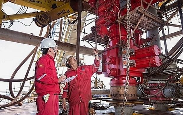 Explotacion petrolera de Vietnam supera meta planteada en los primeros cuatro meses hinh anh 1