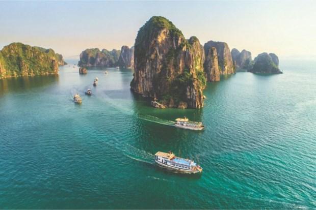 Revista estadounidense presenta dos destinos ideales en Vietnam para viajar con ninos hinh anh 1