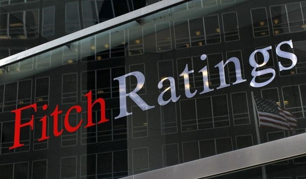 Fitch baja su pronostico de crecimiento de Indonesia a 1,3 por ciento hinh anh 1