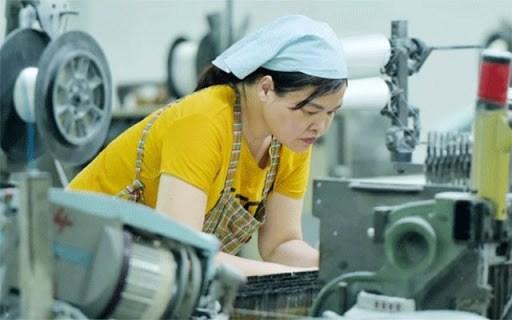 Aumenta a 750 mil la perdida de empleos en Vietnam desde principios de ano hinh anh 1