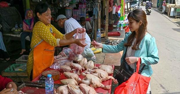 ASEAN Post sugiere medidas para evitar crisis alimentaria causada por el COVID-19 hinh anh 1