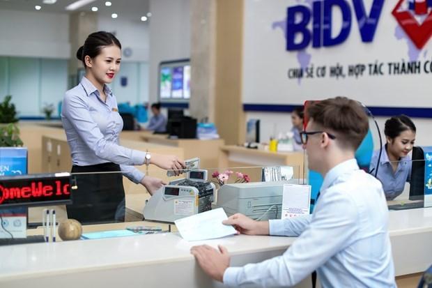 Sector bancario de provincia vietnamita extiende apoyo a clientes hinh anh 1