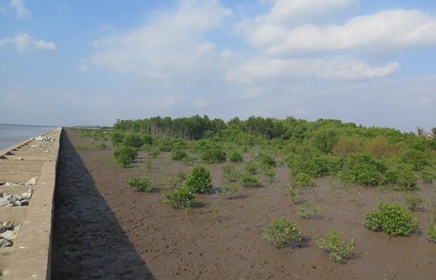 UE y Francia respaldan a Vietnam en lucha contra el cambio climatico y COVID-19 hinh anh 1