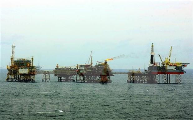 Instalan plataforma petrolifera BK- 21 en yacimiento vietnamita de Bach Ho hinh anh 1