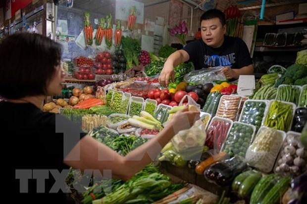 Exportadores vietnamitas de verduras y frutas por ampliar cuota en Tailandia hinh anh 1