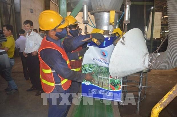 Ponen en marcha la mayor planta de Vietnam para la conversion de residuos en fertilizantes hinh anh 1