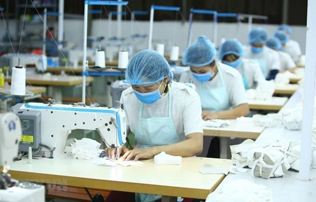 Exportacion de mascarillas, salvavidas del sector textil de Vietnam hinh anh 1