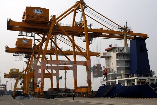 Puerto vietnamita de contenedores recibe a barco superpesado hinh anh 1