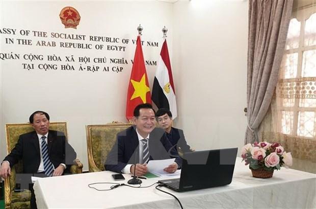 Realizan en Egipto seminario en linea sobre el Presidente Ho Chi Minh hinh anh 1