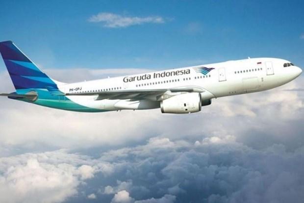 Aerolinea indonesia solicita extender plazo de pago de deuda millonaria hinh anh 1
