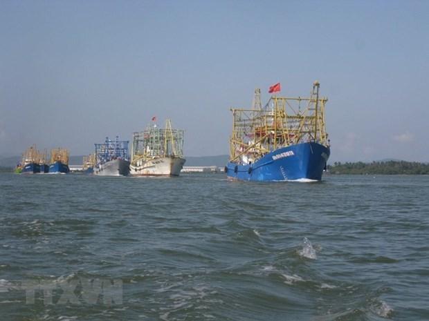 Promueve Vietnam cooperacion internacional en desarrollo economico maritimo hinh anh 1